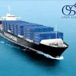 Морские контейнерные перевозки: Владивосток и Юго-Восточная Азия