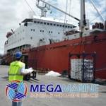 Перевозка зерна через Черноморский порт