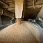 Хранение и перевалка зерна на предпортовом элеваторе.