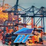 Доставка контейнеров по России и СНГ, внутрипортовое экспедирование грузов.