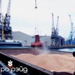 Поставка зерновых грузов на экспорт. Экспедирование зерновых грузов в портах.