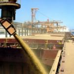 Перевалка сыпучих грузов (зерна) Одесса, Транспортно-логистическая компания DolphinGroup осуществляет перевалку и хранение сыпучих грузов на своей территории.