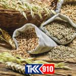 Перевалка зерновых, бобовых и технических культур