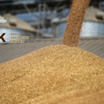 Услуги по перевалке зерна