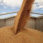 Перевалка зернобобовых и масличных культур
