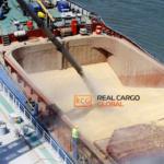 Услуги Морской Перевозки Зерна – Гарантии 100%