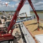 Экспедирование зерновых грузов, поставки зерновых грузов на экспорт.