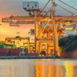 Мы осуществляем мультимодальные и морские контейнерные перевозки в Новороссийске.