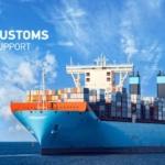 Морские перевозки. Организация импортных и экспортных морских перевозок грузов.
