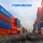 Комплексные терминальные и складские услуги в порту.