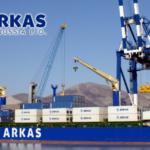 Компания ООО «Аркас Раша» входит в крупнейший турецкий транспортный холдинг Arkas Holding S.A. и является линейным агентом известных морских контейнерных перевозчиков.