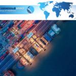 Организация и документальное оформление международных морских перевозок грузов.