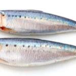 Сахалинская компания «Зюйд-Вест» специализируется на промышленном рыболовстве и переработке.