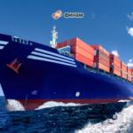 Перевозка грузов морским транспортом, прием опасных грузов, обработка судов, перевалка контейнерных грузов, экспедирование в порту