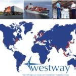 Контейнерные морские перевозки по всему миру. Доставка контейнерных грузов из Китая, Японии, Америки и Европы.