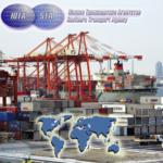 Организация перевалки и перевозки внешнеторговых грузов, их экспедирование в любом виде сообщения через порты России.