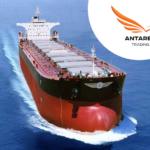 Морские перевозки насыпных грузов, фрахт судов
