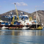 Постоянные партнерские отношения с ведущими морскими перевозчиками; договорные отношения с генеральными экспедиторами портов позволяют нампредложить клиентам широкий спектр экспедиторских услуг.
