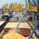 Экспорт пшеницы CIF порты: Египет, Греция, Турция, Тунис, Йемен, ОАЭ и т. д.