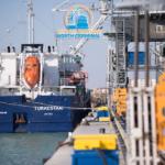 ТОО «АМСТ» представляет собой современный многоцелевой терминал, с возможностью перевалки сухих грузов до 3,0 млн. тонн в год.