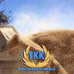 Перевалка зерна в Махачкалинском морском торговом порту Дагестана