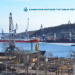 Акционерное общество «Ванинский морской торговый порт» — крупнейшая в Хабаровском крае стивидорная компания.