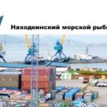 Находкинский морской рыбный порт (НМРП) расположен на северо-западном побережье Японского моря в бухте Находка и связан с центральными районами России и странами Евросоюза Транссибирской железнодорожной магистралью.