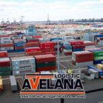 Компания «Авелана Логистик» осуществляет внутрипортовое экспедирование в портах Санкт-Петербург, Новороссийск, Усть-Луга, Владивосток.