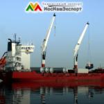 Экспорт и реэкспорт товаров из России