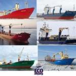 ООО «Эко Шиппинг» – ведущая судоходная компания, оперирующая морским флотом, базирующаяся в порту г. Архангельска.