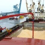 Закупка и экспорт пшеницы через глубоководные порты Чёрного моря.
