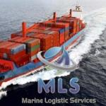 Морские контейнерные перевозки - основной вид деятельности Marine Logistic Services.